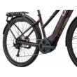 Giant Liv Amiti E+ 2 2021 Női elektromos trekking kerékpár